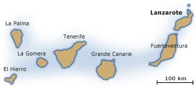 Lanzarote canaries
